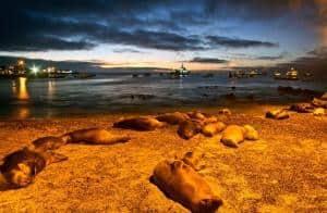 San Cristobal, Galapagos guida e consigli di viaggio! Cosa devi sapere