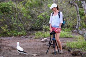 Genovesa, Galapagos: informazioni e consigli di viaggio