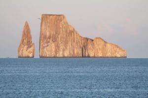 Viaggio alle isole Galapagos - cosa vedere, cosa fare, la guida 2021. Informazioni, consigli! Leon dormido