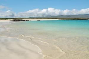 Viaggio alle isole Galapagos - cosa vedere, cosa fare, la guida 2021 - consigli di viaggio alle isole Galapagos