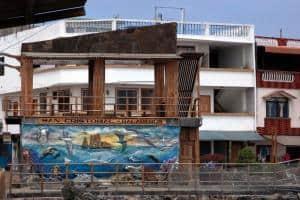 Viaggio alle isole Galapagos - cosa vedere, cosa fare, la guida 2021. San Cristobal