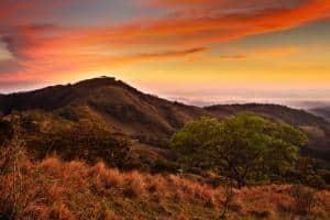 Costa Rica, itinerario di 2 settimane: cosa vedere, cosa fare- Riserva Monteverde